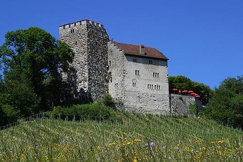 stenen huis met toren.
